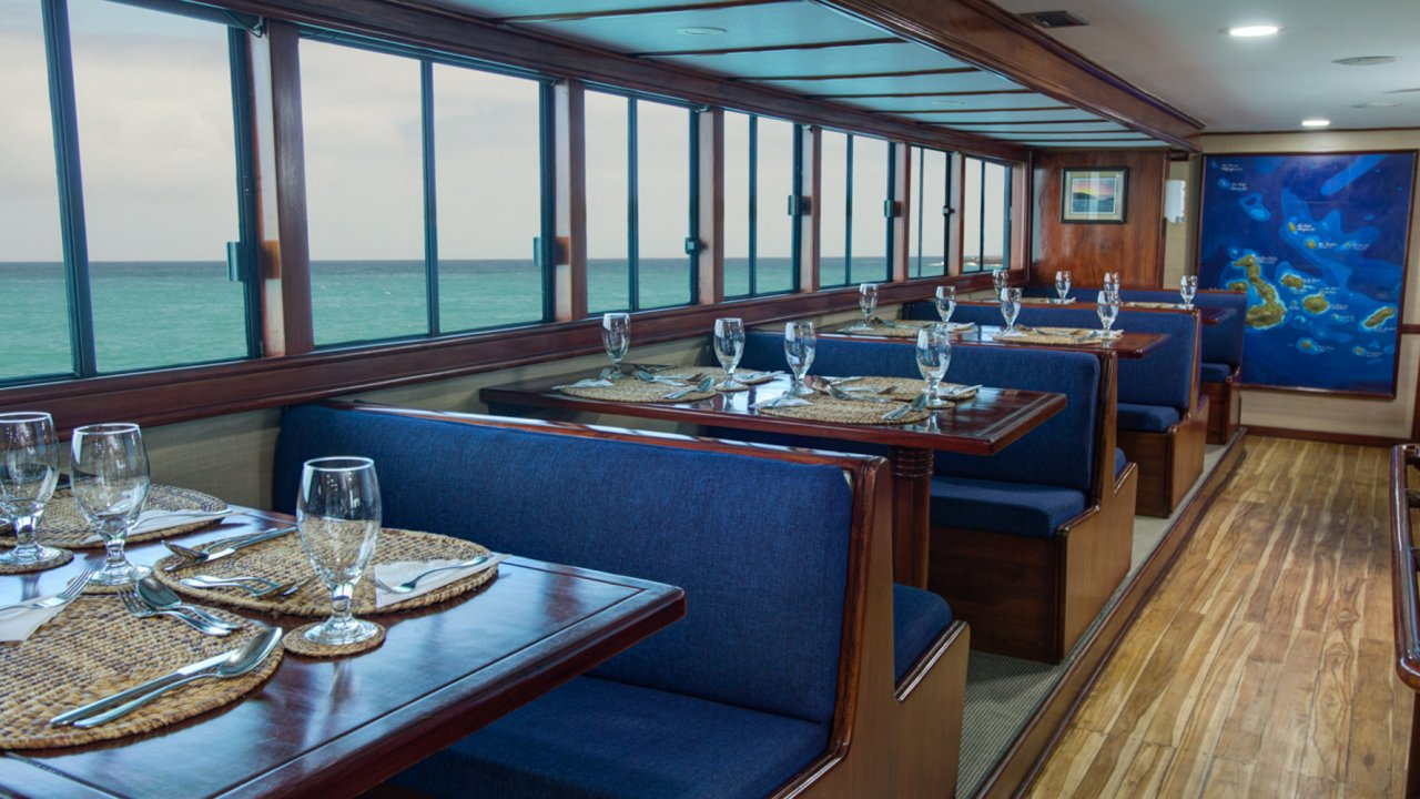 Letty Yacht Tours