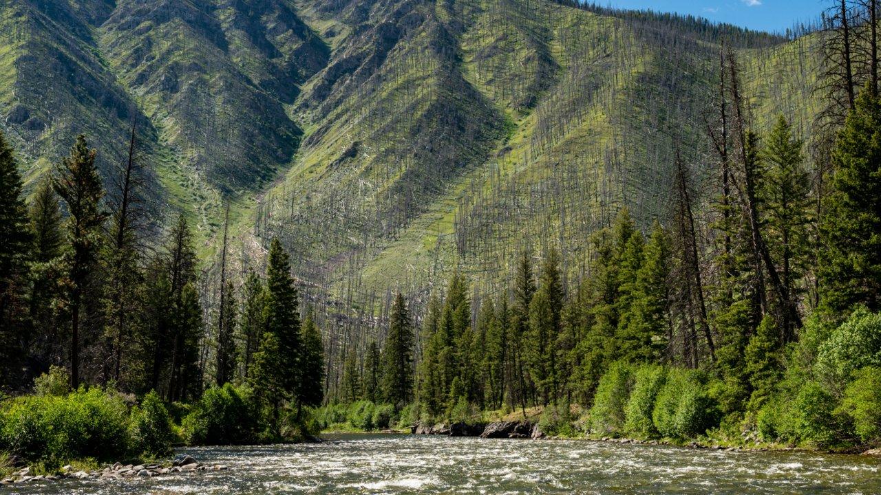 mountains along the salmon river in idaho